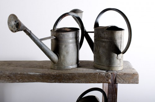 FRENCH PROVINCIAL WATERING CAN c. 1910