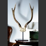 PAIR LARGE SIX POINT MOUNTED ANTLERS