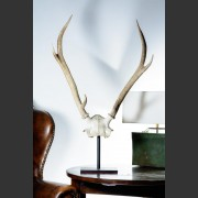 PAIR MEDIUM SIX POINT MOUNTED ANTLERS